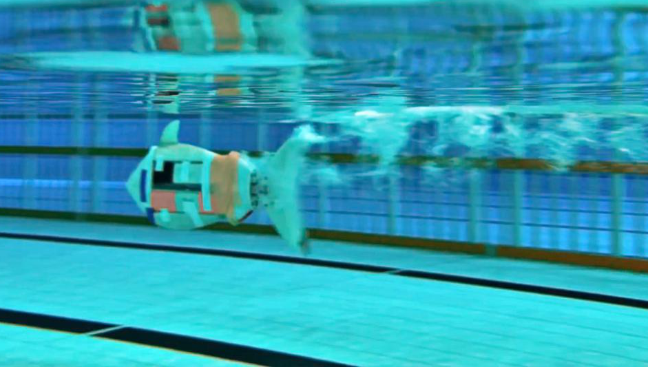 SUSTech sets bionic robotic fish speed world record
